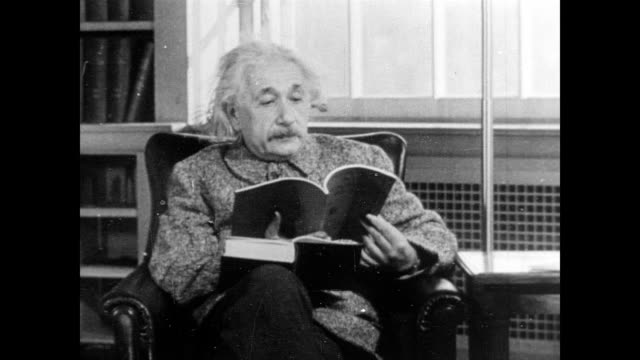 vídeos de stock, filmes e b-roll de / albert einstein sitting in library chair reading / returns book to shelf / smokes pipe in front of fire / returns to reading in chair albert... - albert einstein