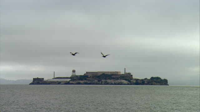 ws alcatraz island, san francisco, california, usa - alcatraz island stock videos & royalty-free footage
