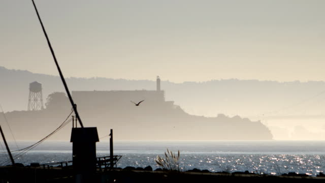 alcatraz island, san francisco - alcatraz island stock videos & royalty-free footage