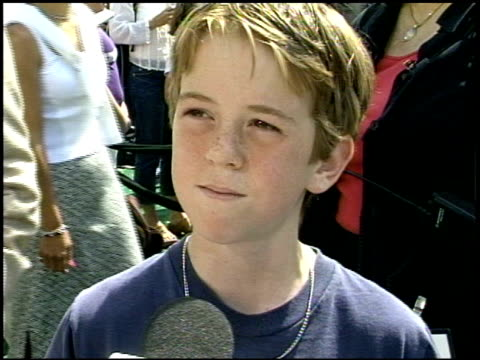 alexander pollock at the 'cats and dogs' premiere at the mann village theatre in westwood california on june 23 2001 - レジェンシービレッジシアター点の映像素材/bロール