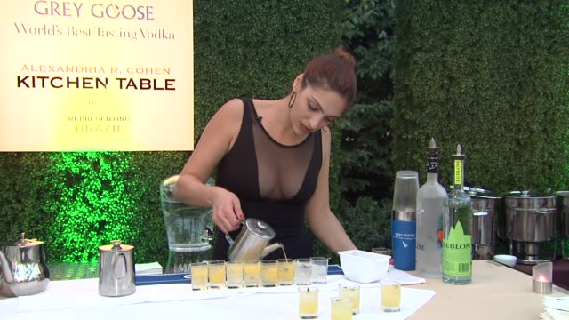 alexandria r cohen on what she prepared for the evening at a taste of the world presented by breeders' cup grey goose vodka on 11/2/2012 in pasadena... - grey goose vodka stock videos & royalty-free footage