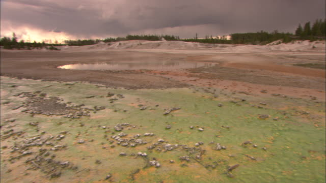 Algae turns the water green in a hotspot in Yellowstone National Park.