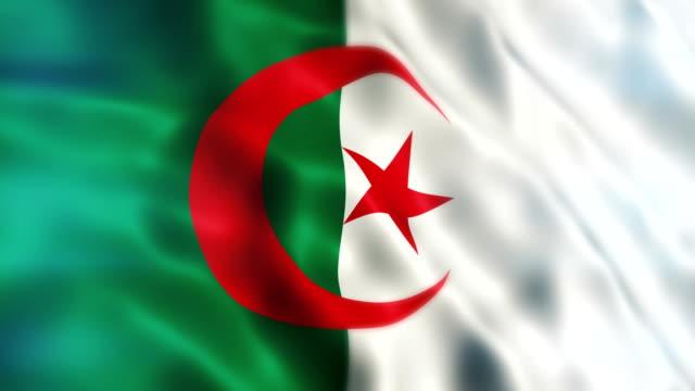vidéos et rushes de algérie drapeau - drapeau