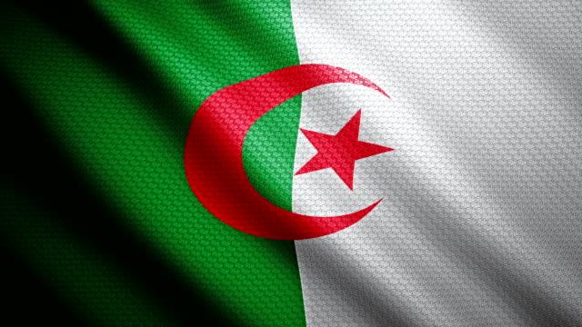 Algerian Flag 4k