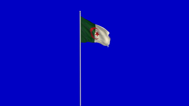 algerische Flagge Rising