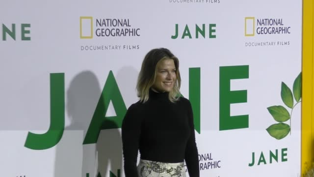 ali larter at the premiere of national geographic documentary films' 'jane' at the hollywood bowl on october 09 2017 in los angeles california - ali larter stock videos and b-roll footage