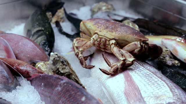 alive crab in a freezer