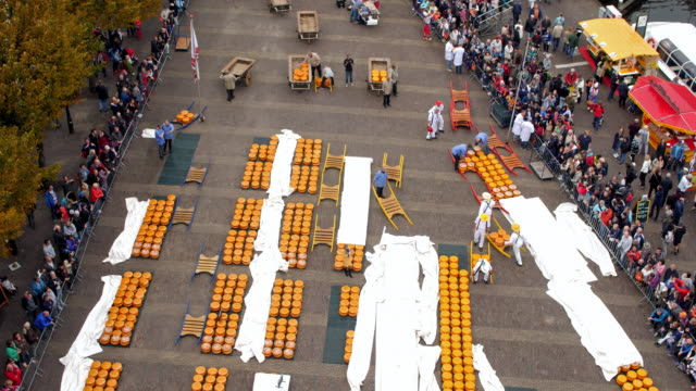 alkmaar cheese market aerial time lapse - local landmark stock videos and b-roll footage