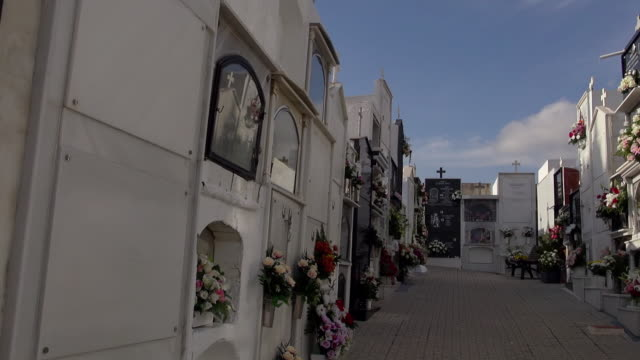 all saints day at the salobrena cemetery - crypt stock videos and b-roll footage