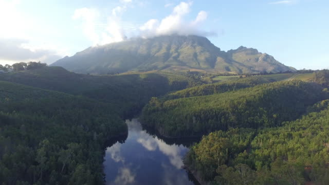 all surrounding life flows from this river - stellenbosch stock videos and b-roll footage