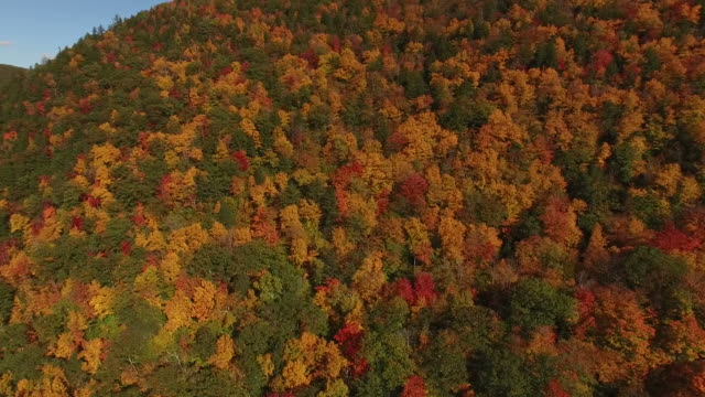 all the colors of fall from drone - vermont stock videos & royalty-free footage