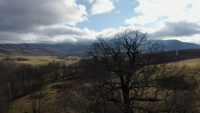 alleghany mountains oak - confederate states of america stock videos & royalty-free footage
