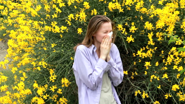 vídeos y material grabado en eventos de stock de alérgica a bloom - estornudar