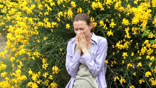 allergic to bloom - hay fever stock videos & royalty-free footage