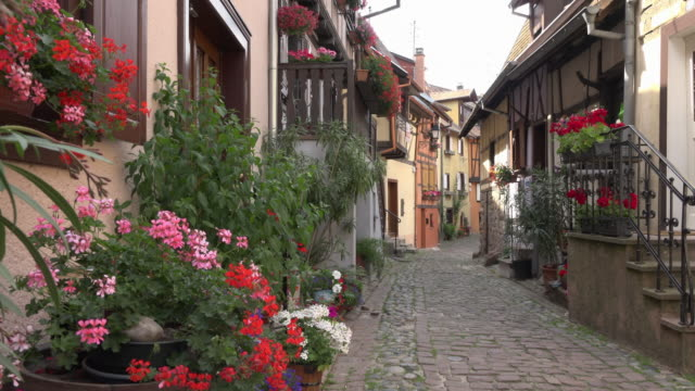zo / alley with half-timbered house in a picturesque village - kopfsteinpflaster stock-videos und b-roll-filmmaterial