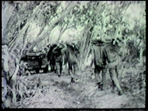 allied forces mobilizing walking through forest crossing bridge swamp some carrying equipment wwii world war ii pacific front morobe province new... - allied forces stock videos and b-roll footage