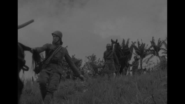 vs allied mountain artillery crews move through banana trees with horses carrying supplies and materiel / horse laden with artillery gun part... - slip banana stock videos & royalty-free footage