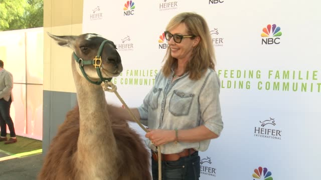 allison janney at feeding families and building communities: heifer international event with nbc on october 21, 2018 in universal city, california. - universal city video stock e b–roll