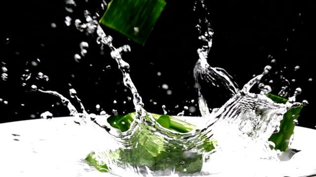 aloe vera falling and water splash, slow motion - slice stock videos & royalty-free footage