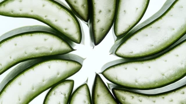 aloe vera slice on white background.natural herb concept.aloe vera gel for skin care. - skin care stock videos & royalty-free footage