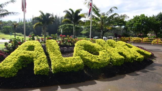 vídeos de stock e filmes b-roll de aloha grass hedge sign for all hawaii tourists and visitors here in kauai but everywhere in hawaii 4k - aloha