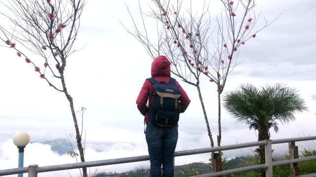 vidéos et rushes de seul routard explorer dans la belle nature - tourisme vert