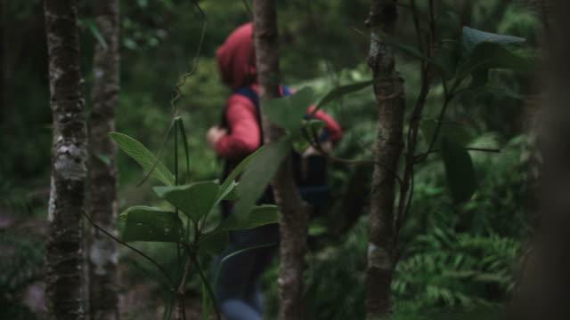 Allein Backpacker im tropischen Regenwald Erkunden