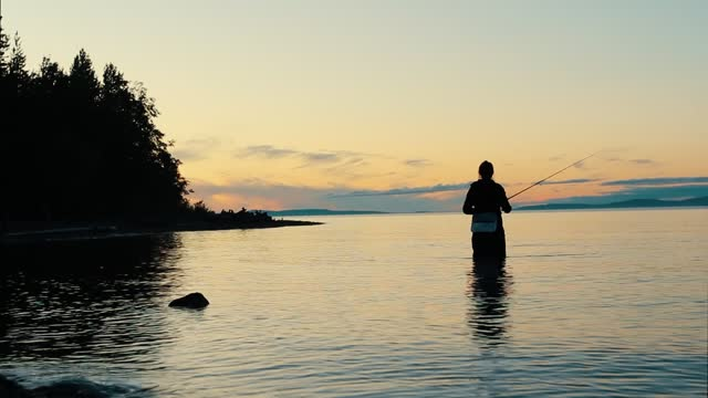 alone fisher woman standing in the water is fishing with a fishing rod in a large picturesque lake at sunset in summer. outdoor activities, weekend camping, hobbies and relaxation - fisherman stock videos & royalty-free footage