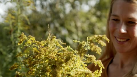 vidéos et rushes de alone in nature - sentir