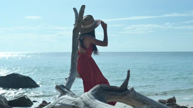 stockvideo's en b-roll-footage met alleen in het zeestrand - boomstronk