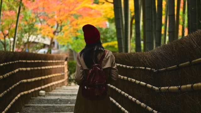 alone on the autumn - natural condition stock videos & royalty-free footage