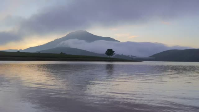 alone tree by lake at dawn - vietnam stock videos & royalty-free footage