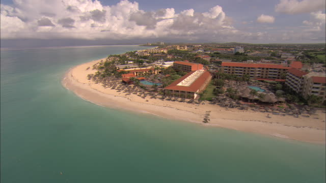 low aerial, along beach and holiday resorts, aruba - fan palm tree stock videos & royalty-free footage