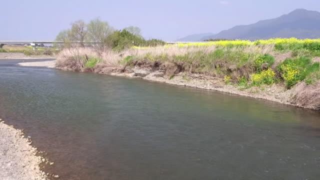 aerial, along hikosan river, fukuoka - fukuoka prefecture stock videos and b-roll footage