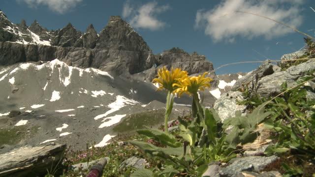 Alpen Panorama, Switzerland