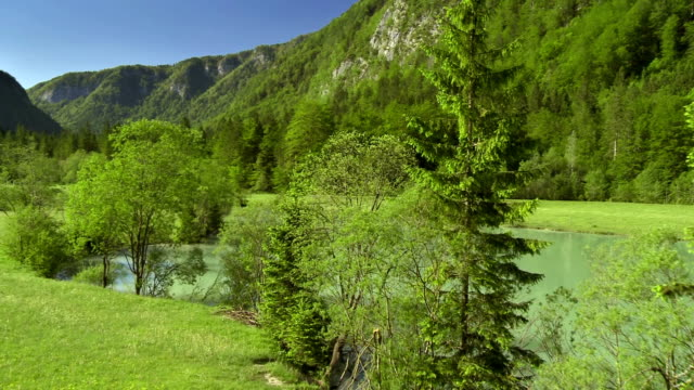 ws aerial alpine meadow by the pond - slovenia meadow stock videos & royalty-free footage