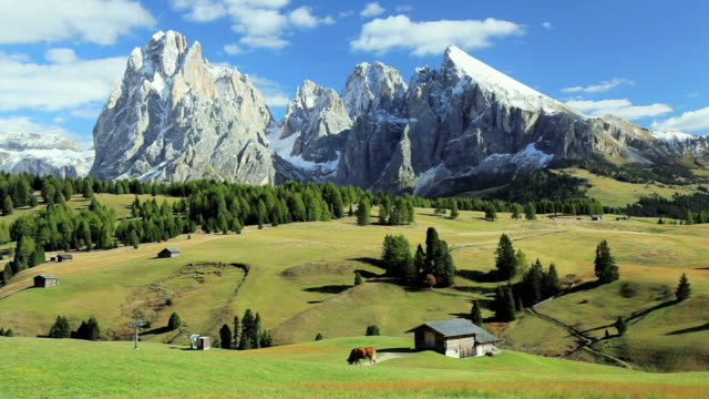 ws alpine meadow with snow capped mountains in the background / italy - peter snow stock videos & royalty-free footage