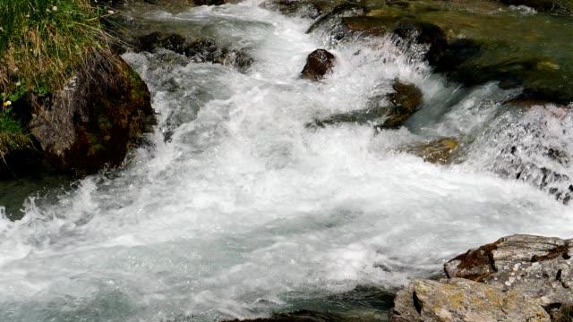 Alpine Mountain River in Springtime