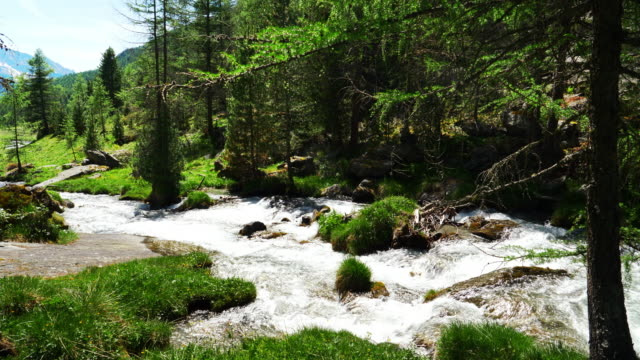 alpine mountain valley in springtime - natural condition stock videos and b-roll footage