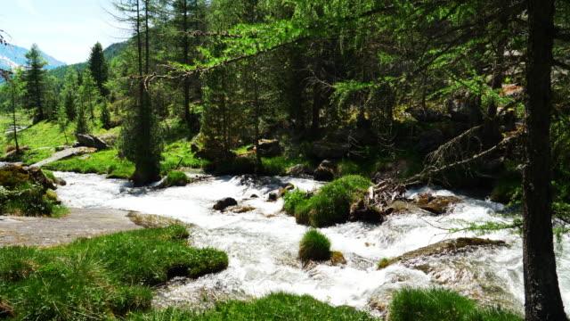 vídeos de stock, filmes e b-roll de vale alpino de montanha na primavera - condição natural