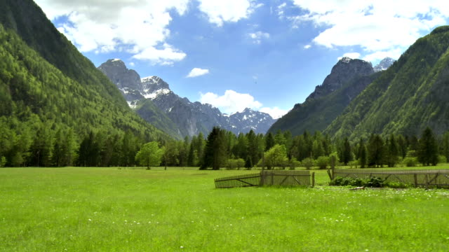 ws aerial alpine pasture - slovenia meadow stock videos & royalty-free footage