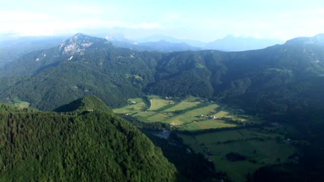 vídeos de stock e filmes b-roll de hd: alpino eslovénia - pinaceae