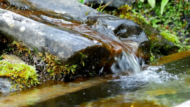 alpine spring cinemagraph - fountain stock videos & royalty-free footage