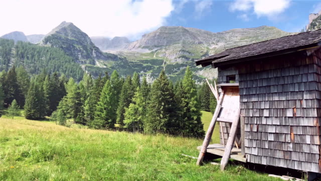 alpine transhumance with wooden shack - upper austria stock videos & royalty-free footage