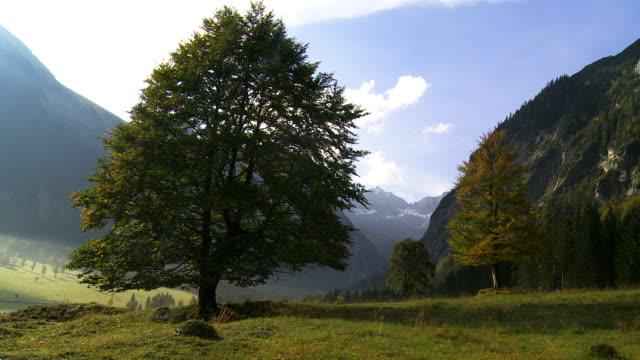 alpine valley in autumn - karwendel mountains stock videos and b-roll footage