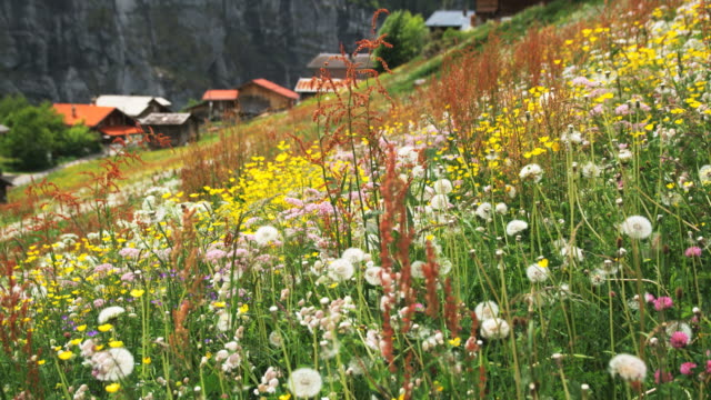 alpine village - gimmelwald stock videos & royalty-free footage