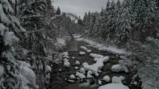 Alpine Winter Landscape, Bavaria, Germany,Europe