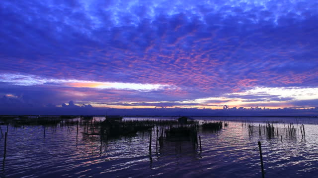 altocumulus at sunset in tropical zone. - altocumulus stock videos and b-roll footage