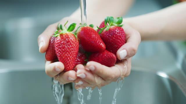 vídeos de stock e filmes b-roll de always clean your fruit and veggies before consumption - lava loiças