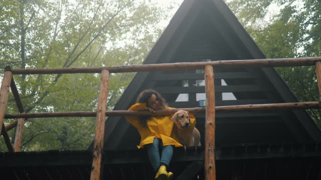 i am the happiest dog in the world - cottage stock videos & royalty-free footage